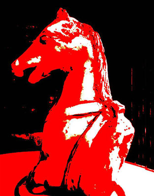 PaardaangepAffkopiefoto